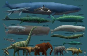 Megafauna Size Comparison Mk2 by Harry-the-Fox