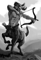 Centaur archer Dungeons And Dragons Bestiary by zelldweller