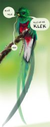 Quetzal by Nirves