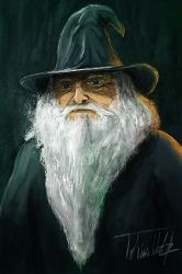 Wizard by TWPictures