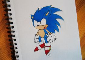 Mr. Needlemouse, Before Sonic the Hedgehog by JustJesss