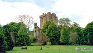 Touch of Blarney by FoxDesigns