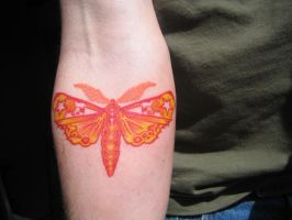 The Moth by SwampoO