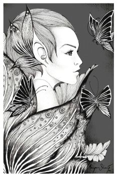 butterfly illusions by manje