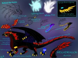 Dragon Me reference sheet -updated- by BlackDragon-Studios