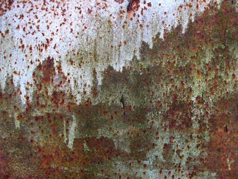 mountain view rust by synesthesea