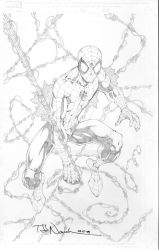 Spider-Man Commission 001 by ToddNauck