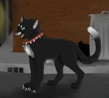 Fan art LGDC/ Warrior cats by BlastOfWinter