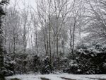 Snowy background stock by LittleOph