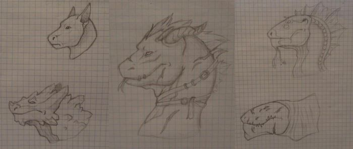 Dragons heads! by Rixxes