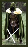 Drizzt Do'Urden - full by farmerownia
