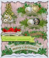 Christmas ornaments by roula33