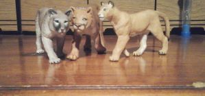 Cougarclan by Growlie26