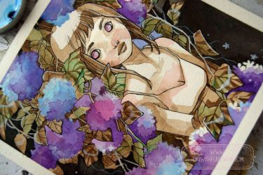 June Hydrangeas by nati