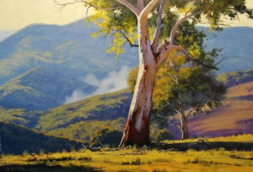 koala gum tree by artsaus