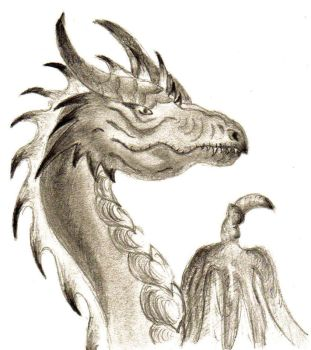 Dragon Portrait by May43