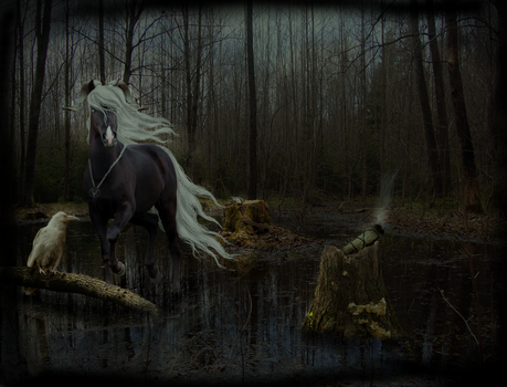 Swamp Witch by lil-snowbear
