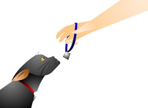 Not coming back by PolicromaSol