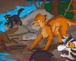 Silencing Doubts... - Sunstar: Warrior Cats by pinkbunnygirl43
