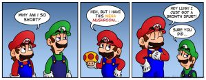 Mario's Solution by Gabasonian