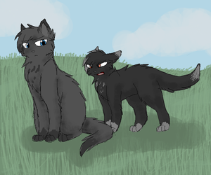 Crowfeather and Breezepaw by CascadingSerenity