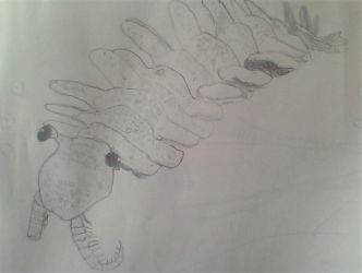 Anomalocaris drawing by Dracorider19