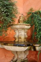 orange and green in Sevilla by Shreever