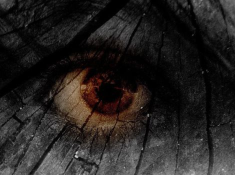 No Blind Eyes Can See I by lacrimosa-fans