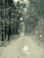 Premade background - Winter by ForestGirlStock
