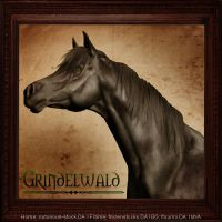 Grindelwald by VIP-EquineArt