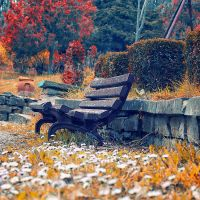 The bench by Bomb-Creator