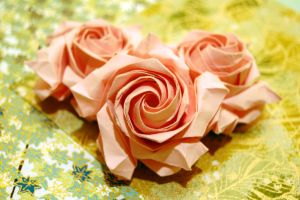 Rose Nouvelle by refold