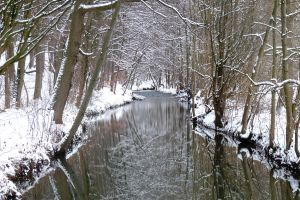 cold reflections by Dieffi