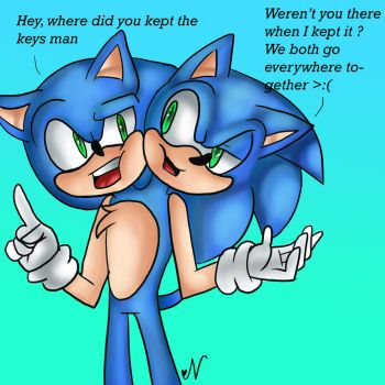 Request from HeartinaRosebud: Sonic with two heads by Navu22