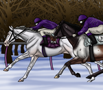 Ghost and Cloud In The Winter Senior Race by angry-horse-for-life