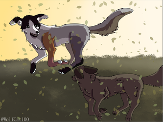 Run by WolfCat100