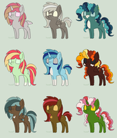 Pony Auction  [1/9 OPEN] by SuperFancyAdopts