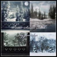 Winter Scenes by flordelys-stock
