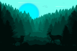 -- Forest shapes -- by 0l-Fox-l0