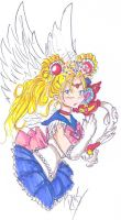 Princess Sailor Moon by heart-of-glass