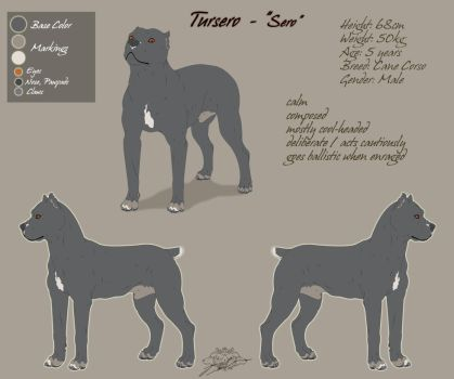 Tursero  Charsheet and Ref by Akira-White-Wolf