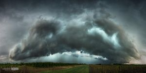 Also the coming thunderstorm by NorbertKocsis