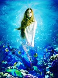 mermaid_with fishes! by YesongSONG