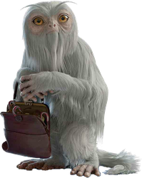 Fantastic Beasts - Demiguise PNG by DavidBksAndrade