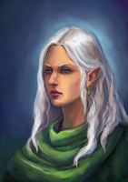 Elf. Comission by Ephy-Drow