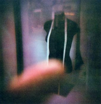 holga 35 we took your mesure by smurphetta
