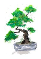 Green Bonsai Watercolor - ZeichenbloQ.de by MarcHorn