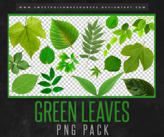 Leaves | PNG by sweetpoisonresources