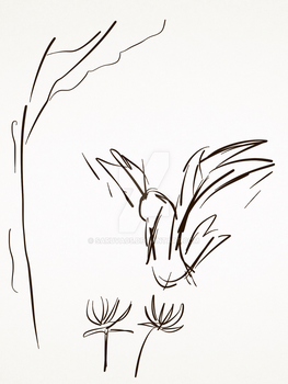 Sketch-flowerbird by Saruva05