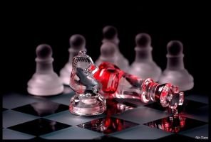 Check Mate by ofirk
